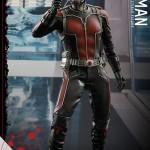 Ant Man Hot Toys Figura 1/6